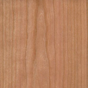 Sample of Cherry wood